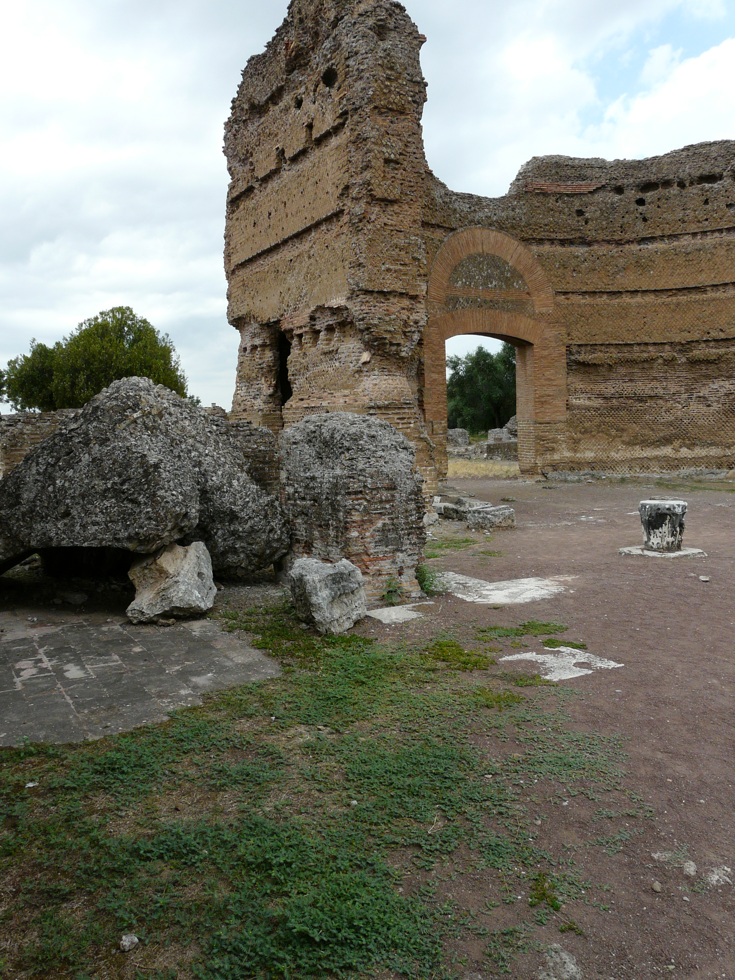 © Dipartimento di Scienze della Vita, Università di Trieste<br>by Andrea Moro<br>Comune di Tivoli, Villa Adriana, RO, Lazio, Italia, 18/07/2011<br>Distributed under CC-BY-SA 4.0 license.