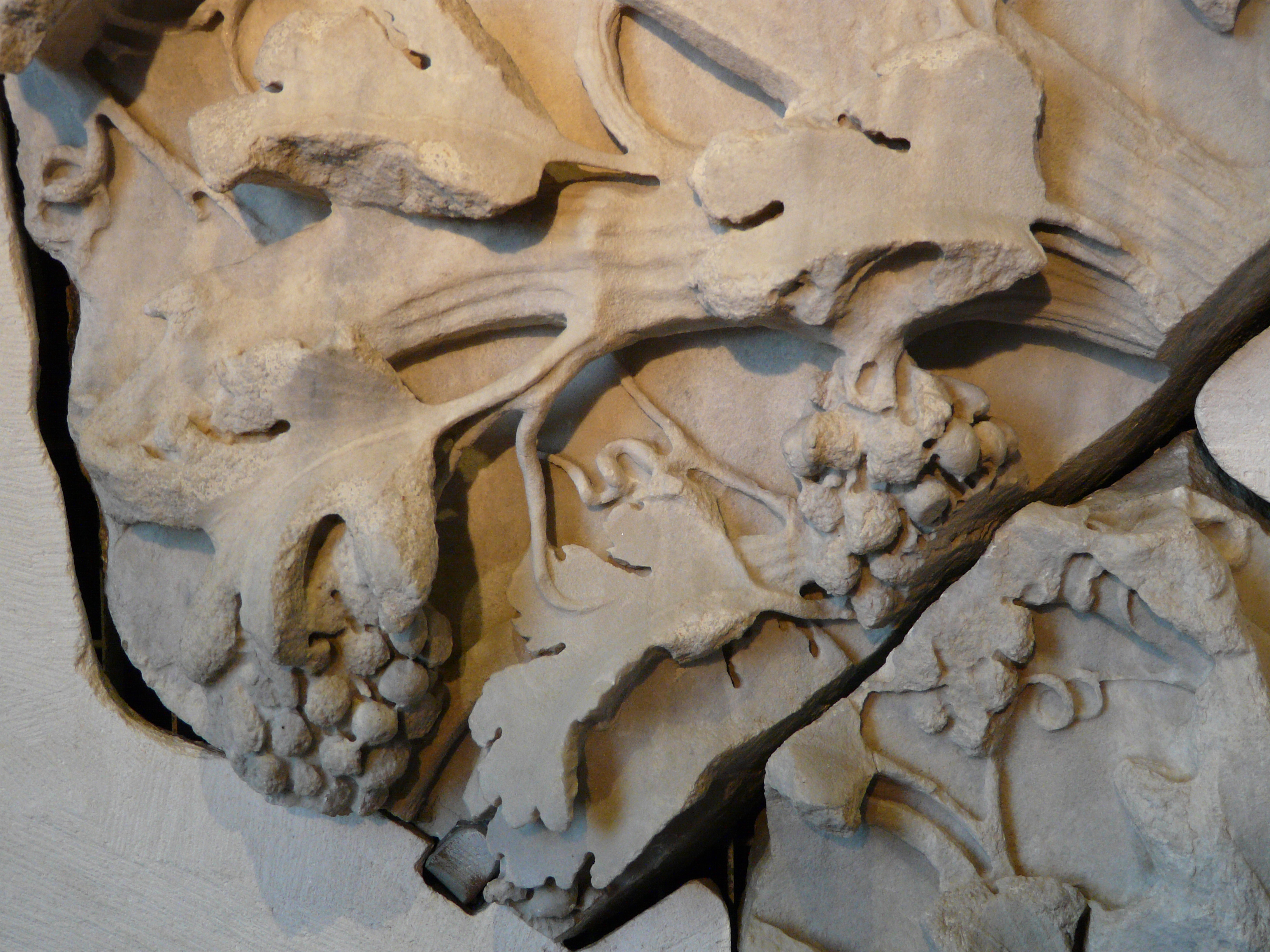 © Dipartimento di Scienze della Vita, Università di Trieste<br>by Andrea Moro<br>Roma, Museo dei Mercati di Traiano, fusto di lesena decorato con tralci di vite, Tempio di Venere Genitrice, 113 d.C., RO, Lazio, Italia, 18/07/2011<br>Distributed under CC-BY-SA 4.0 license.
