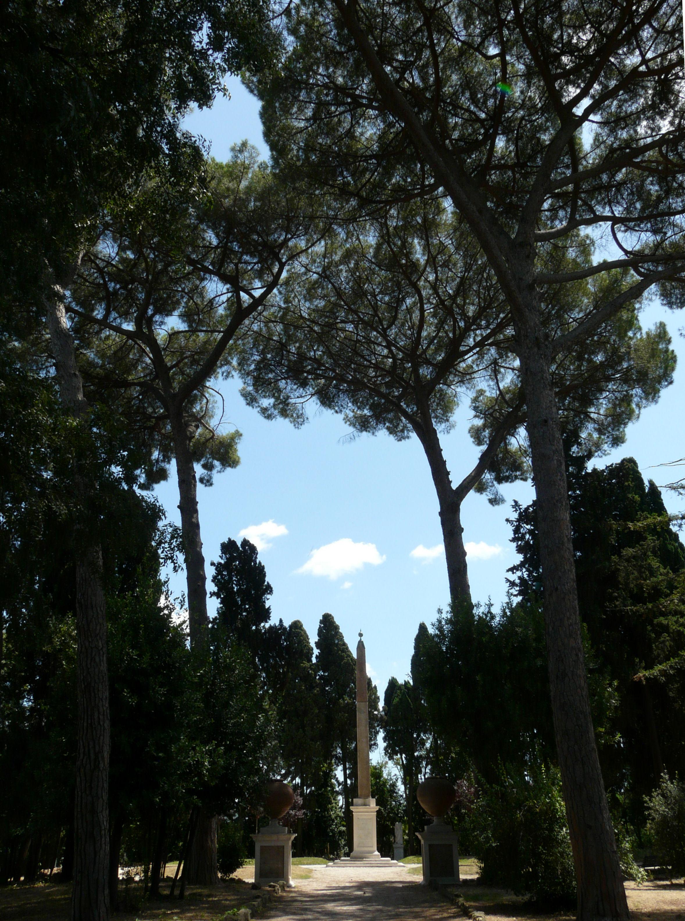 © Dipartimento di Scienze della Vita, Università di Trieste<br>by Andrea Moro<br>Roma, Parco della Villa Celimontana, RO, Lazio, Italia, 18/07/2011<br>Distributed under CC-BY-SA 4.0 license.