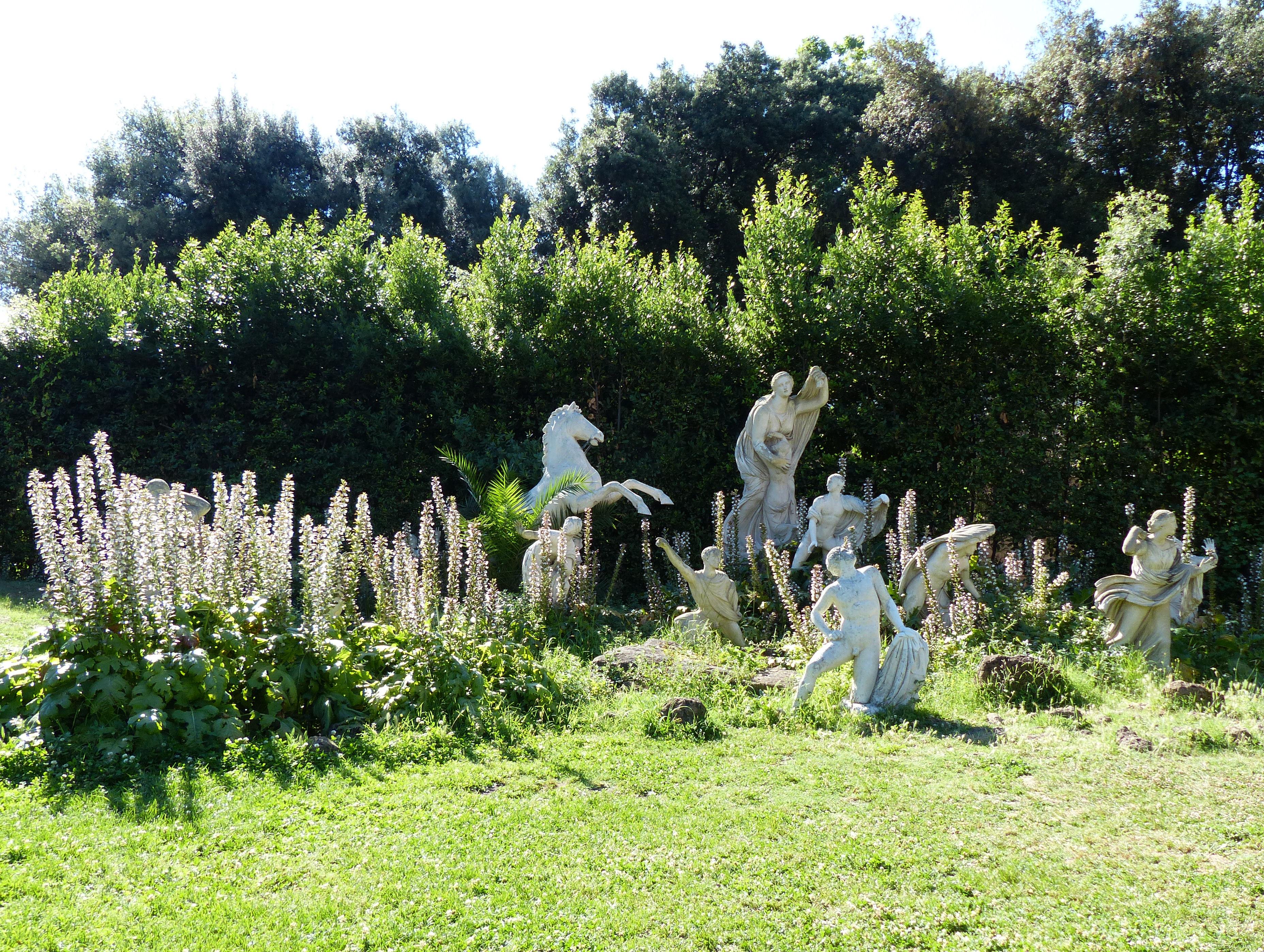 © Dipartimento di Scienze della Vita, Università di Trieste<br>by Andrea Moro<br>Comune di Roma, Villa Medici, Giardino, Roma, Lazio, Italia, 26/06/2015<br>Distributed under CC-BY-SA 4.0 license.