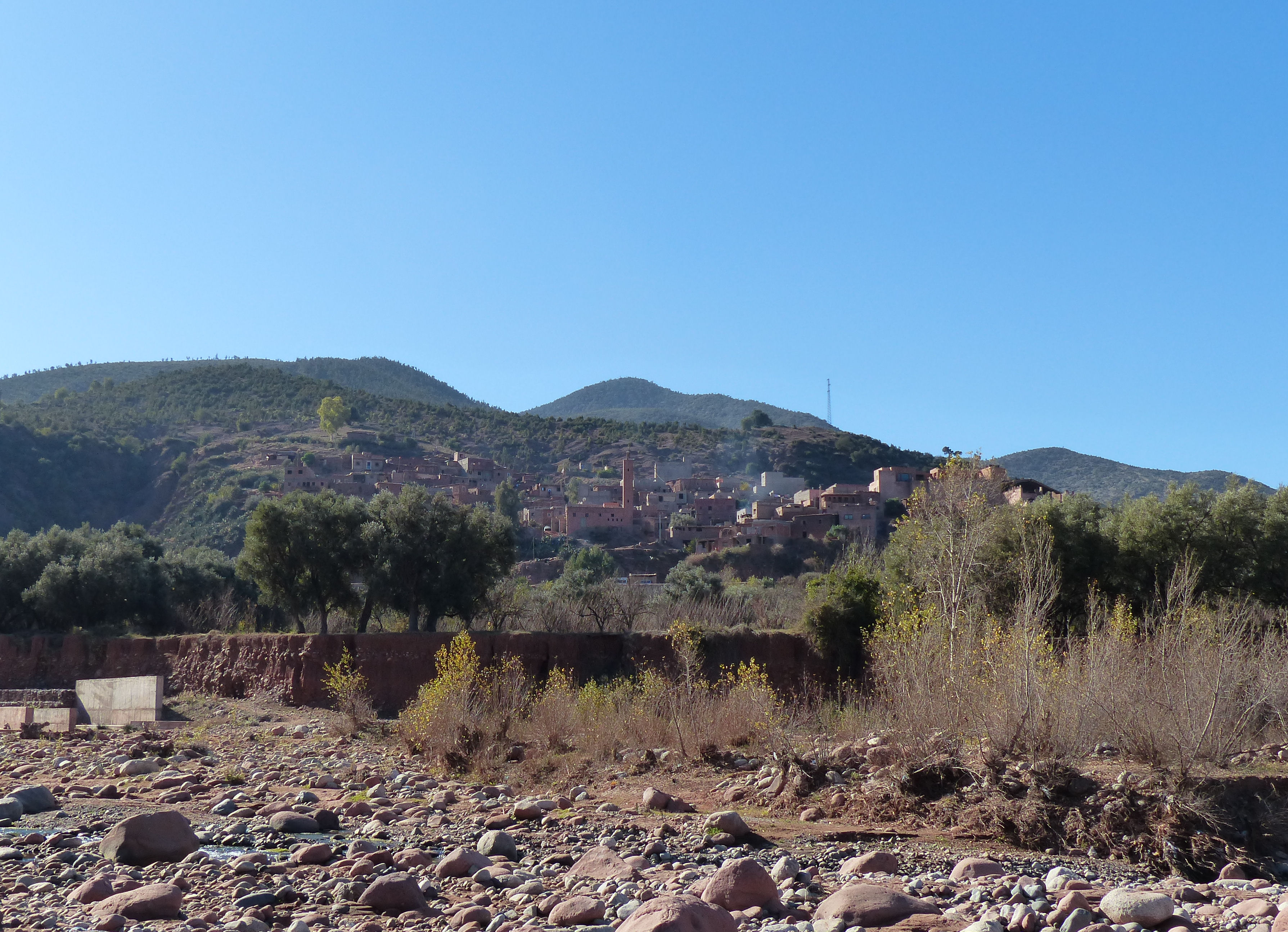 © Dipartimento di Scienze della Vita, Università di Trieste<br>by Andrea Moro<br>Prime pendici dell'Atlas di Marrakech, Marrakech, Marrakech-Tensift-El Haouz, Marocco, 29/12/2015<br>Distributed under CC-BY-SA 4.0 license.