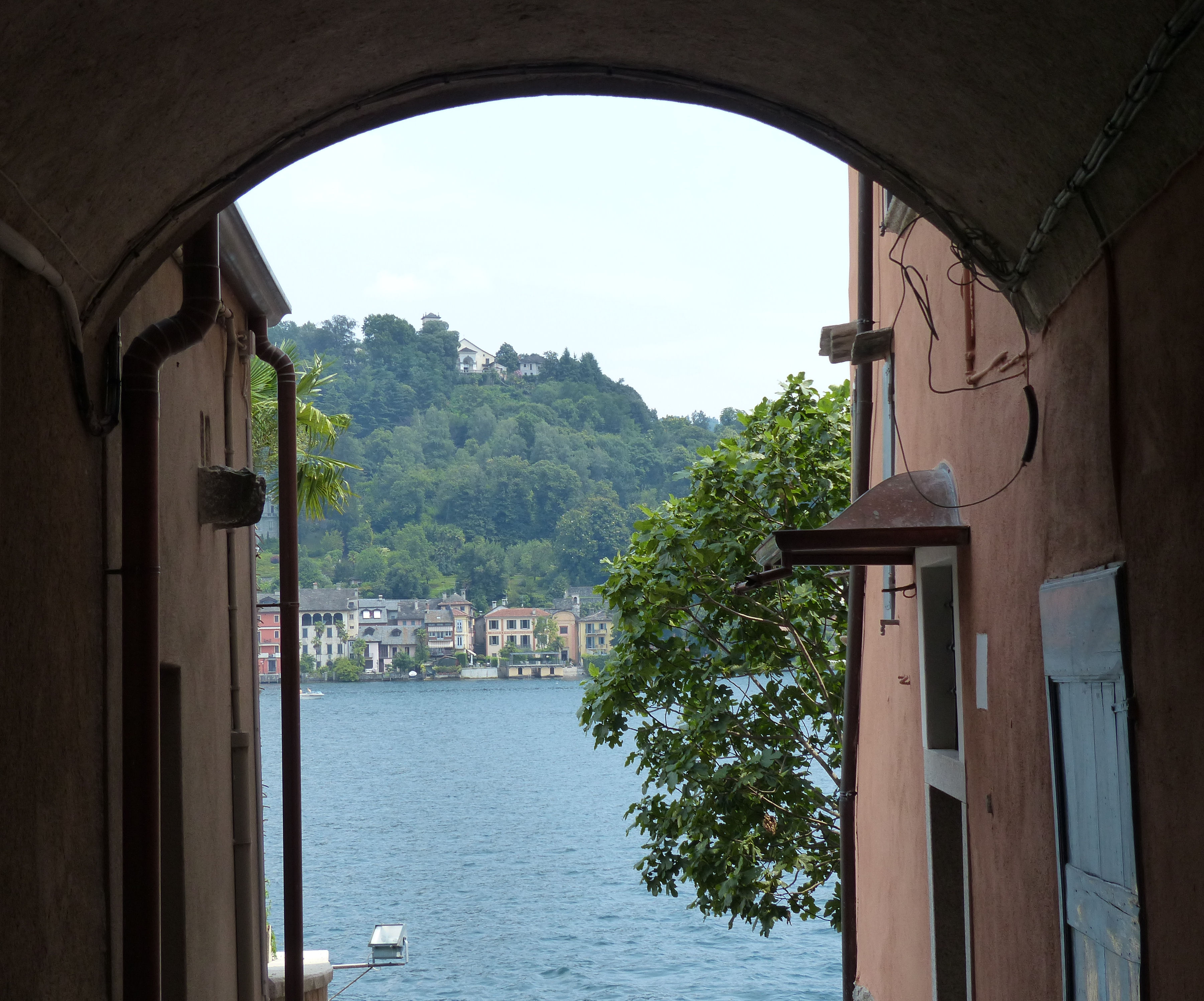 © Dipartimento di Scienze della Vita, Università di Trieste<br>by Andrea Moro<br>Comune di Orta San Giulio, Isola di San Giulio, NO, Piemonte, Italia, 23/07/2012<br>Distributed under CC-BY-SA 4.0 license.