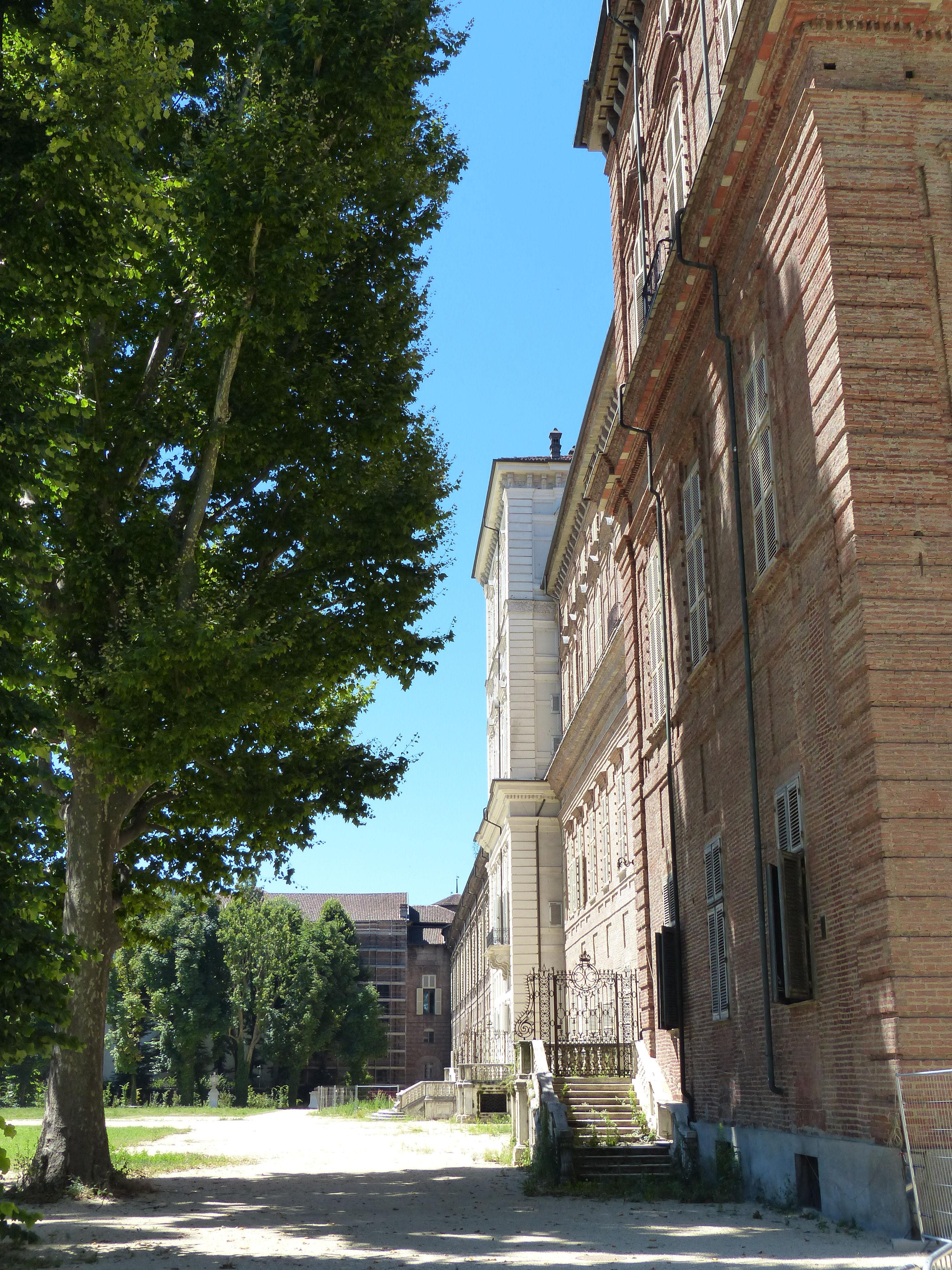 © Dipartimento di Scienze della Vita, Università di Trieste<br>by Andrea Moro<br>Comune di Torino, Giardini Reali, TO, Piemonte, Italia, 26/07/2016<br>Distributed under CC-BY-SA 4.0 license.