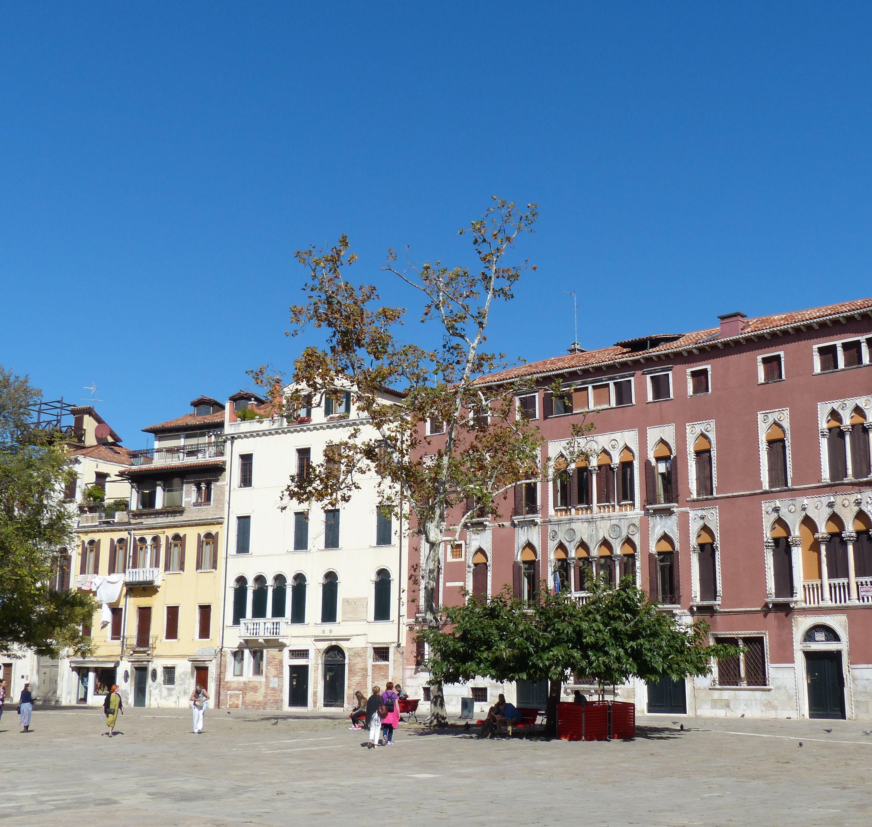 © Dipartimento di Scienze della Vita, Università di Trieste<br>by Andrea Moro<br>Comune di Venezia, San Polo, VE, Veneto, Italia, 04/10/2016<br>Distributed under CC-BY-SA 4.0 license.