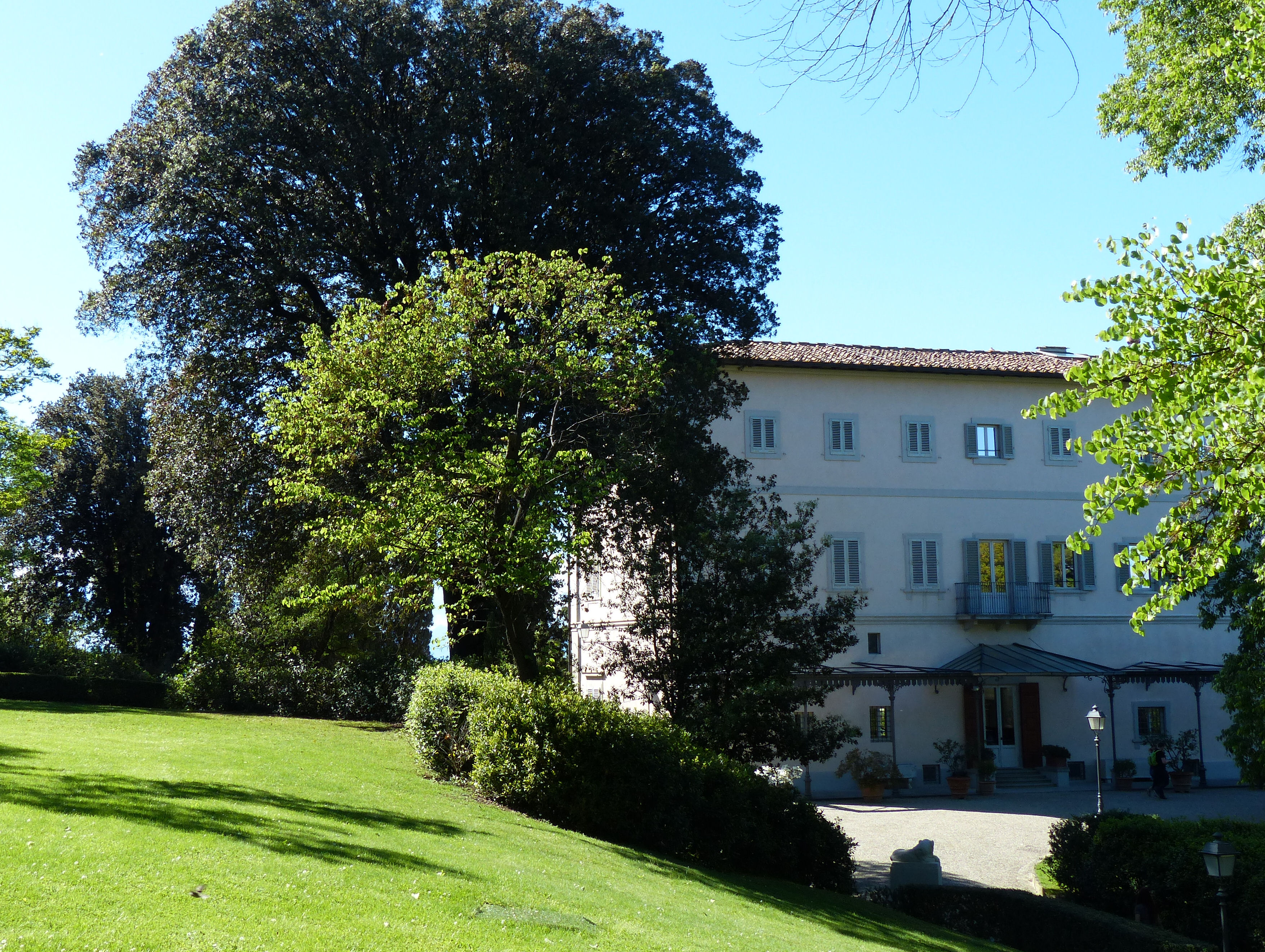 © Dipartimento di Scienze della Vita, Università di Trieste<br>by Andrea Moro<br>Comune di Firenze, Giardino Bardini, FI, Toscana, Italia, 06/05/2017<br>Distributed under CC-BY-SA 4.0 license.