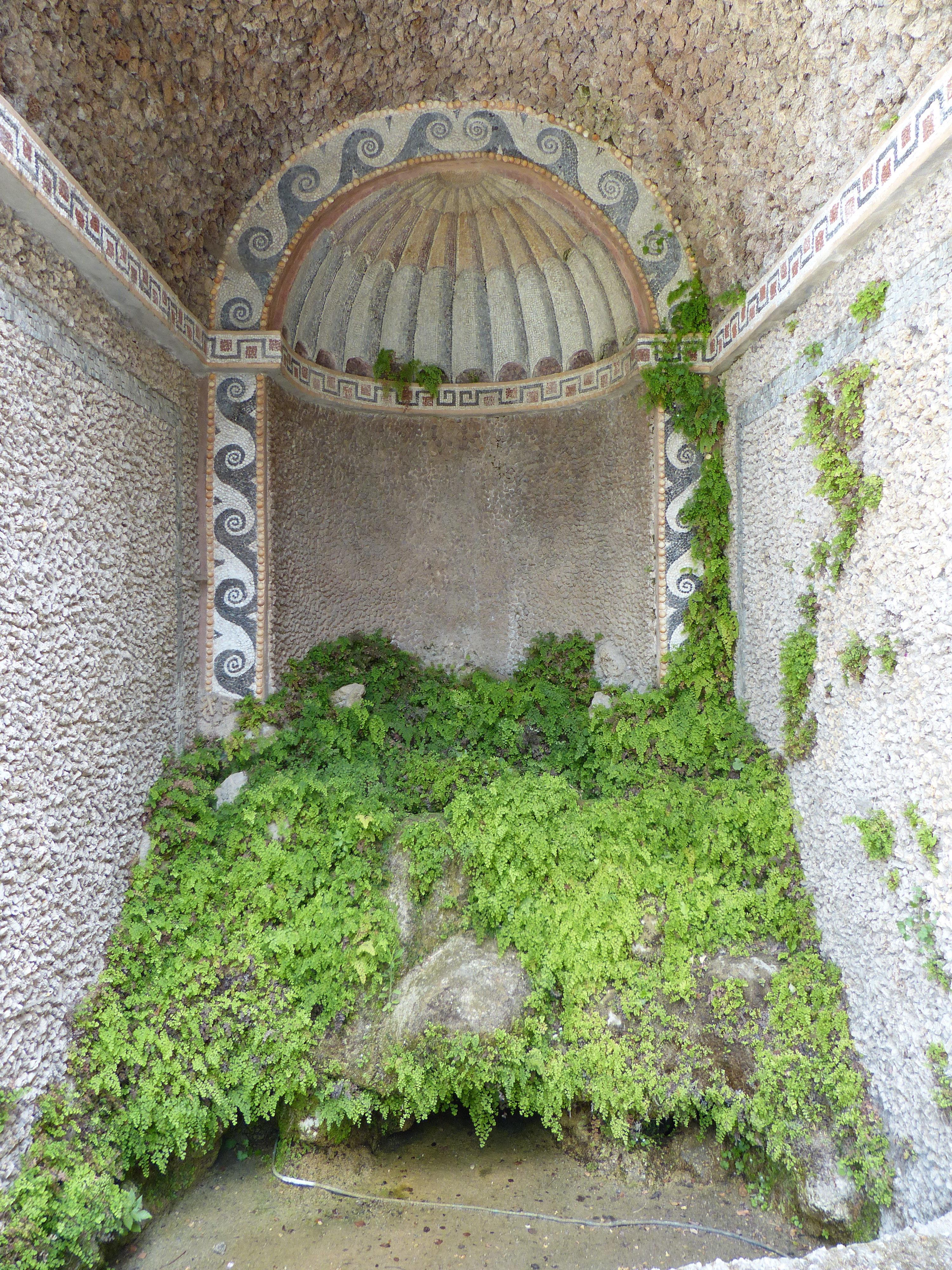 © Dipartimento di Scienze della Vita, Università di Trieste<br>by Andrea Moro<br>Comune di Tivoli, Giardini di Villa d'Este, Roma, Lazio, Italia, 06/06/2017<br>Distributed under CC-BY-SA 4.0 license.