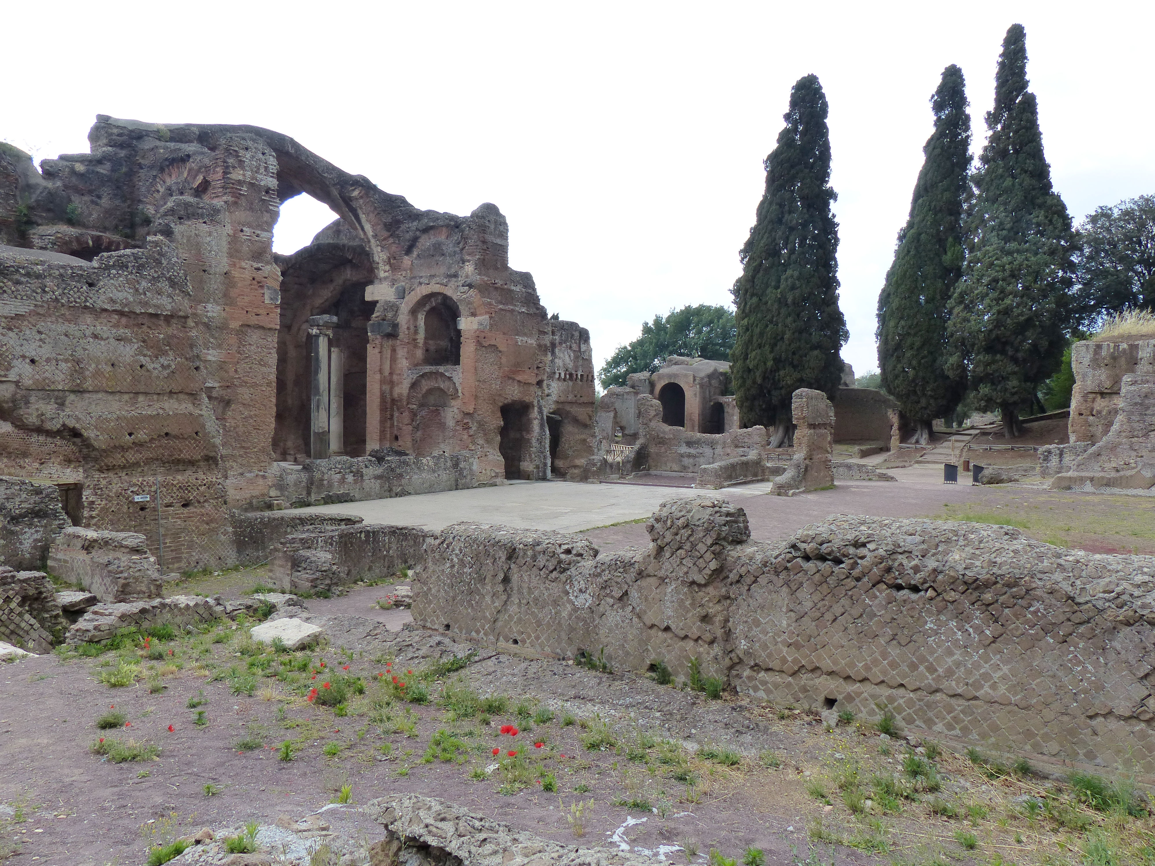 © Dipartimento di Scienze della Vita, Università di Trieste<br>by Andrea Moro<br>Comune di Tivoli, Villa Adriana, area archeologica, Roma, Lazio, Italia, 06/06/2017<br>Distributed under CC-BY-SA 4.0 license.