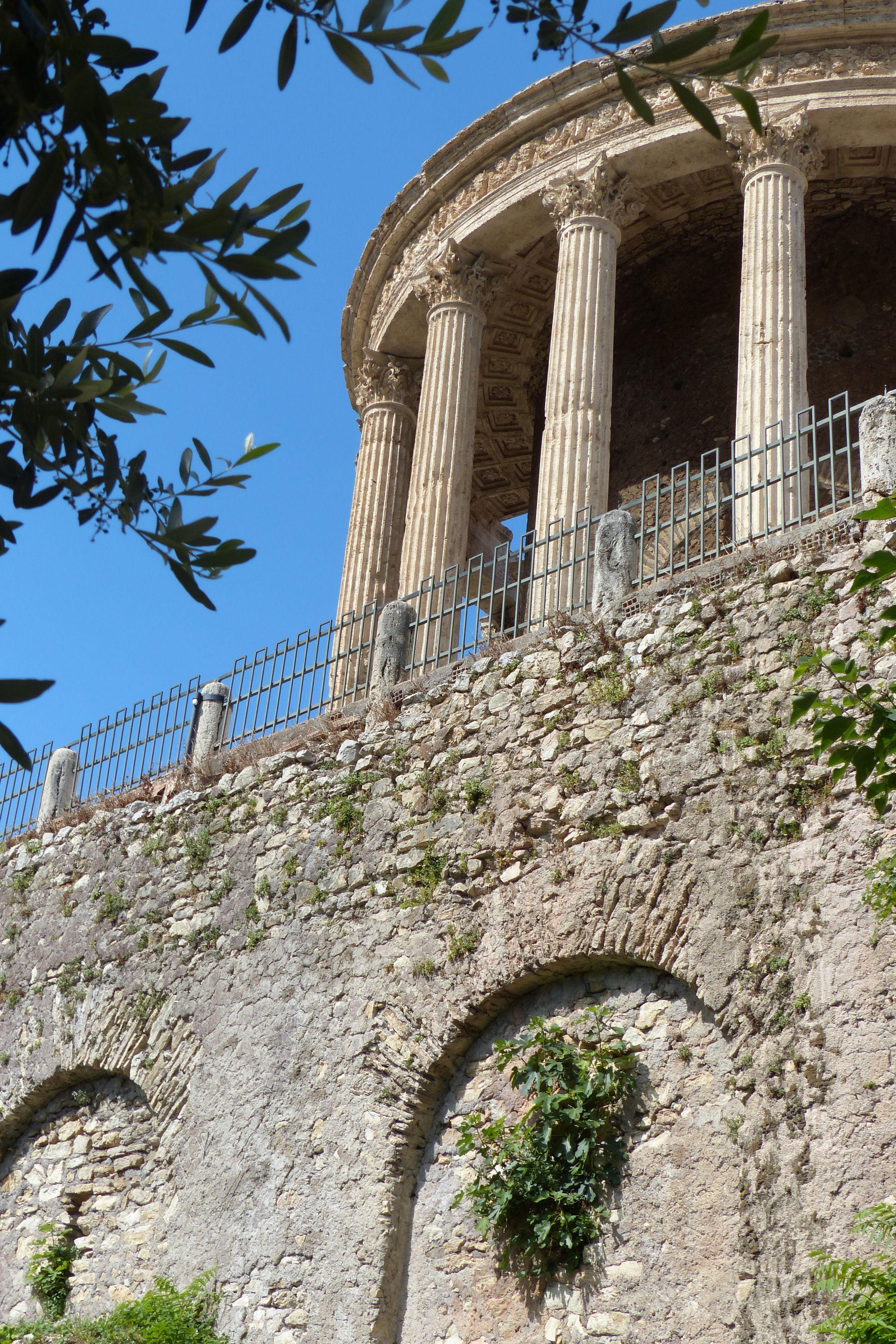 © Dipartimento di Scienze della Vita, Università di Trieste<br>by Andrea Moro<br>Comune di Tivoli, Villa Gregoriana, Tempio di Vesta, Roma, Lazio, Italia, 06/06/2017<br>Distributed under CC-BY-SA 4.0 license.