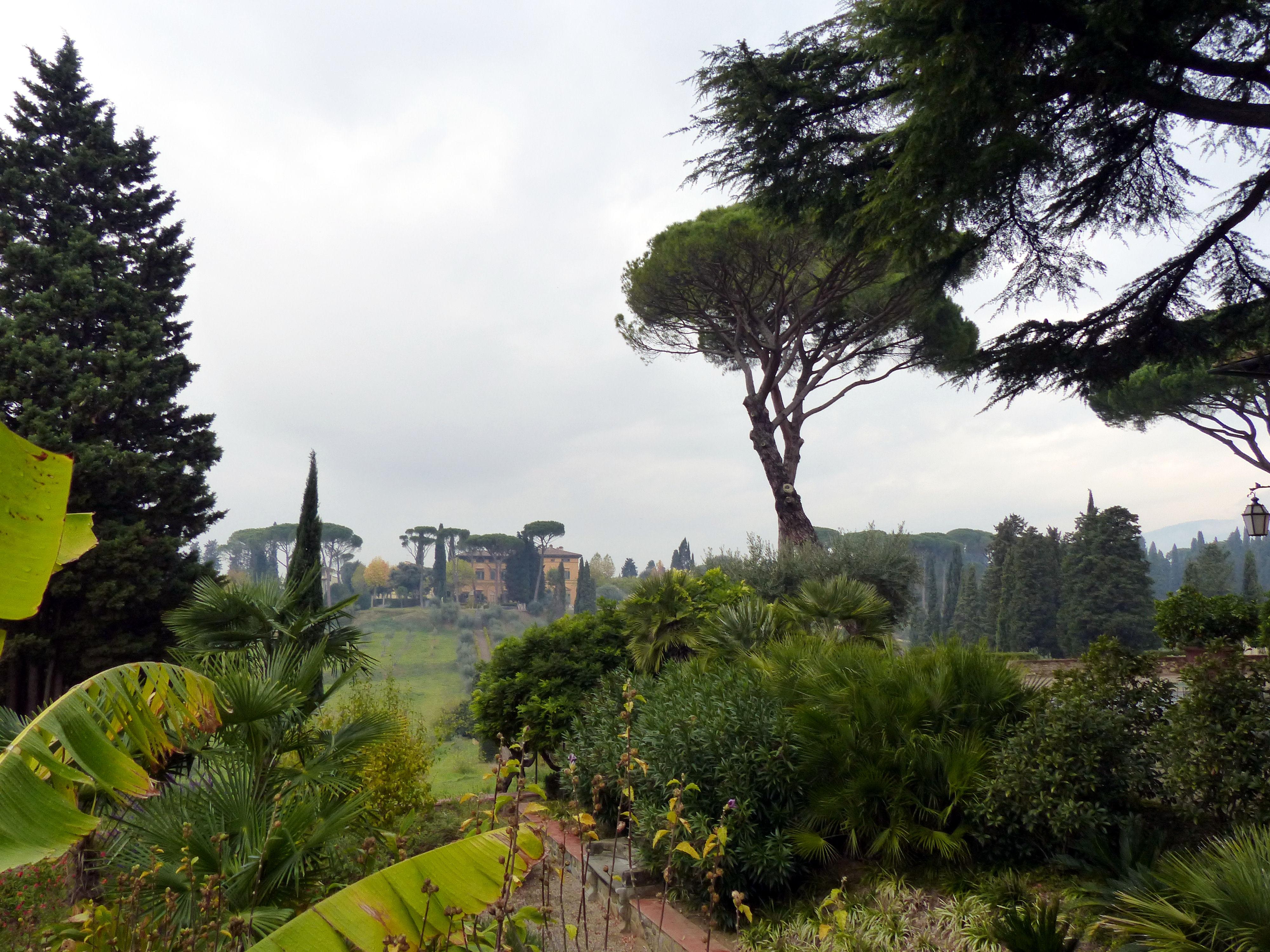 © Dipartimento di Scienze della Vita, Università di Trieste<br>by Andrea Moro<br>Comune di Firenze, nei pressi della Villa La Pietra, FI, Toscana, Italia, 02/11/2017<br>Distributed under CC-BY-SA 4.0 license.