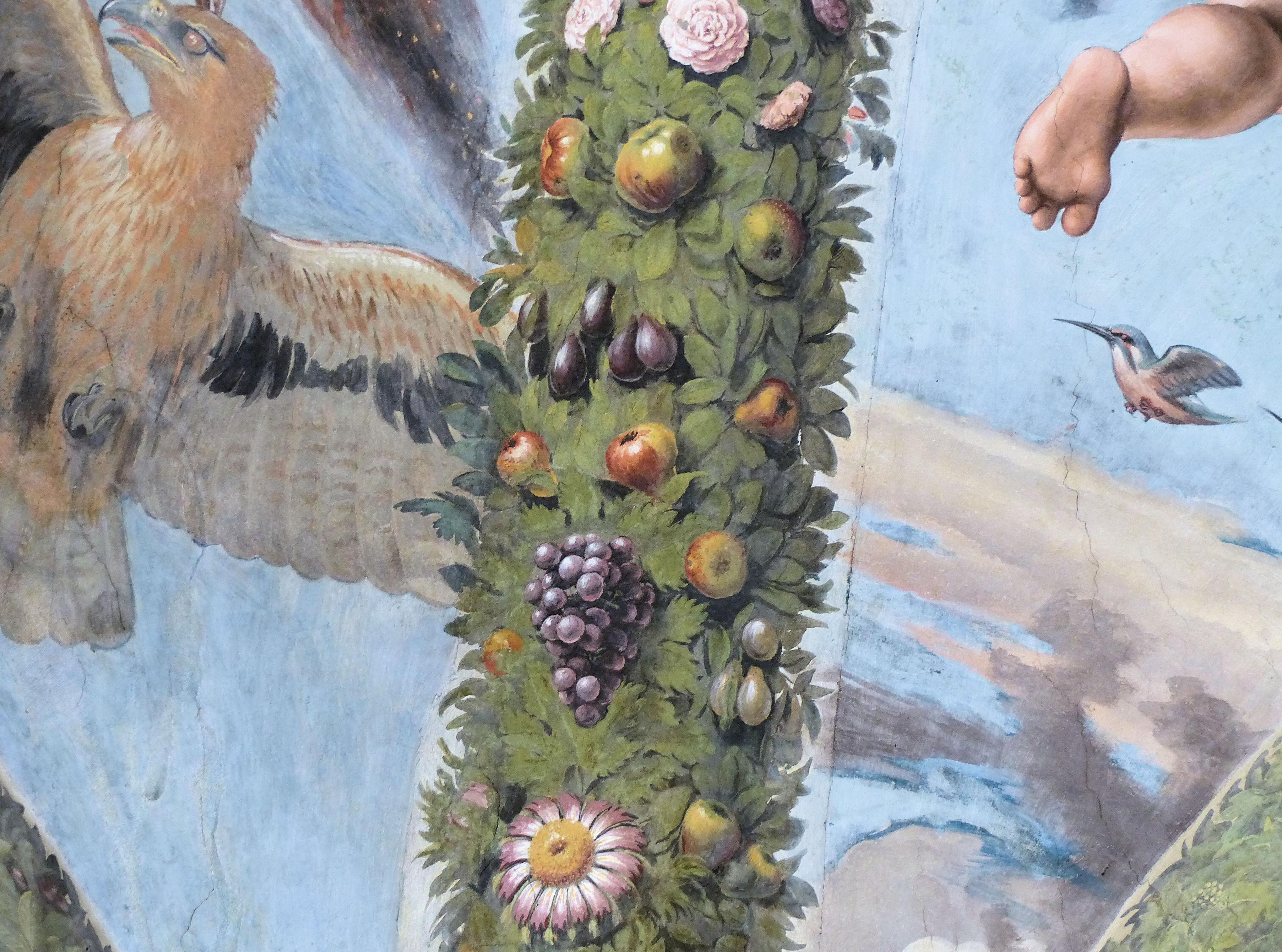 © Dipartimento di Scienze della Vita, Università di Trieste<br>by Andrea Moro<br>Comune di Roma, Villa Farnesina, Loggia di Amore e Psiche, Giovanni da Udine, Roma, Lazio, Italia, 05/06/2017<br>Distributed under CC-BY-SA 4.0 license.