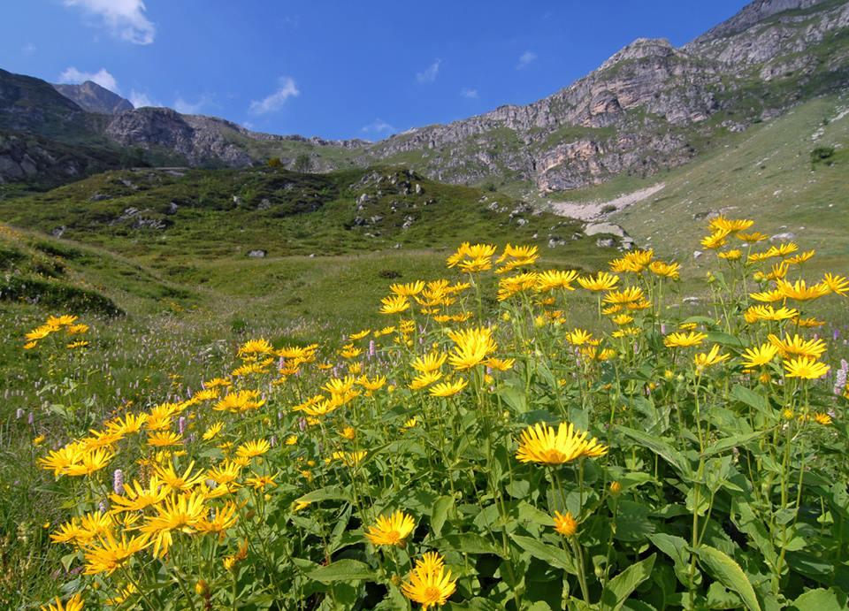 © Remo Bernardello<br>by Remo Bernardello<br>Alpi Marittime, Italia,