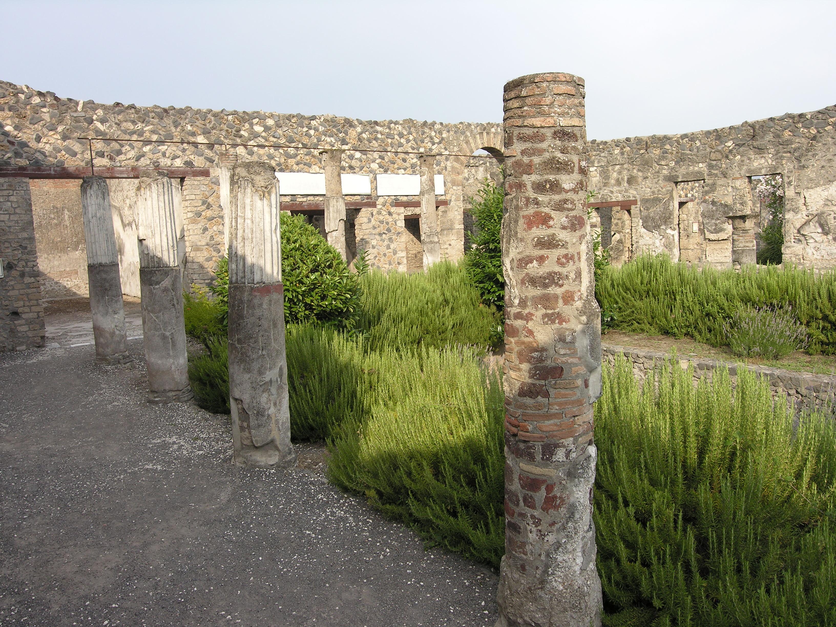 © Dipartimento di Scienze della Vita, Università degli Studi di Trieste<br>by Andrea Moro<br>Antica Pompei, scavi archeologici, NA, Campania, Italia, 12/07/2010<br>Distributed under CC-BY-SA 4.0 license.