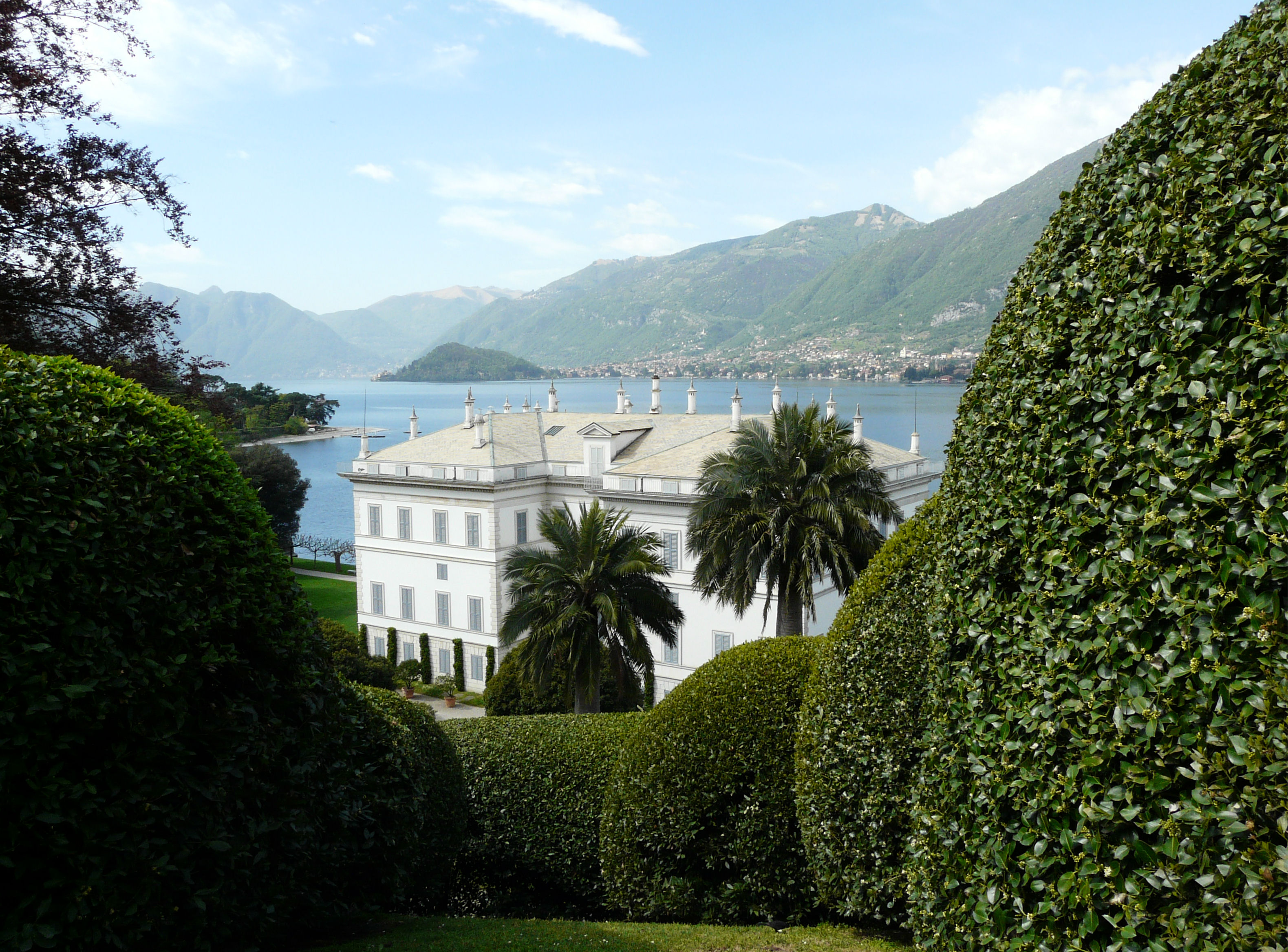 © Dipartimento di Scienze della Vita, Università degli Studi di Trieste<br>by Andrea Moro<br>Comune di Bellagio, Giardino Botanico di Villa Melzi, CO, Lombardia, Italia, 12/04/2011<br>Distributed under CC-BY-SA 4.0 license.