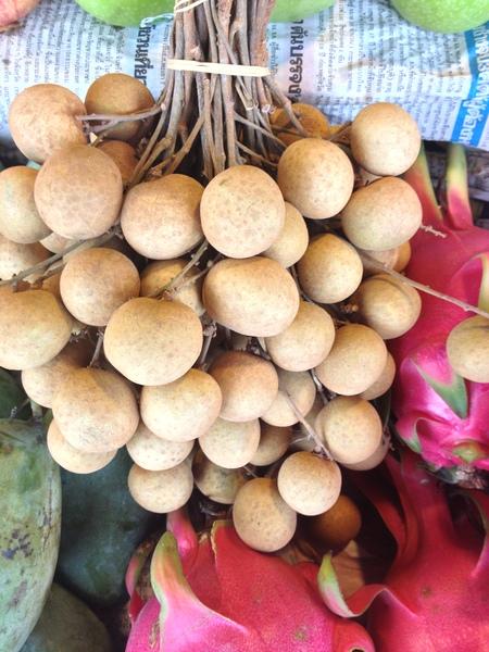 Dimocarpus longan Lour.