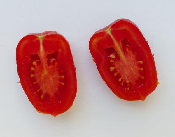 Solanum lycopersicum L. 'Piccadilly'
