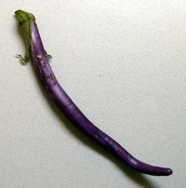 Solanum melongena L. 'Perlina'