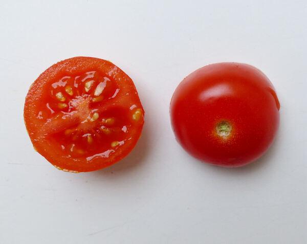 Solanum lycopersicum L. 'Cherry'