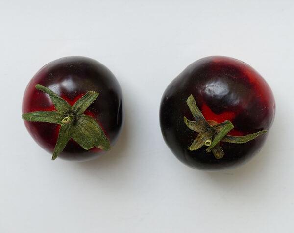 Solanum lycopersicum L. 'Sun Black'