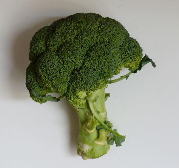 Brassica oleracea L. 'Broccoli'