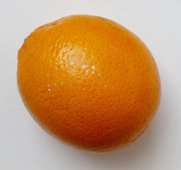 Citrus x sinensis (L.) Osbeck 'Moro'
