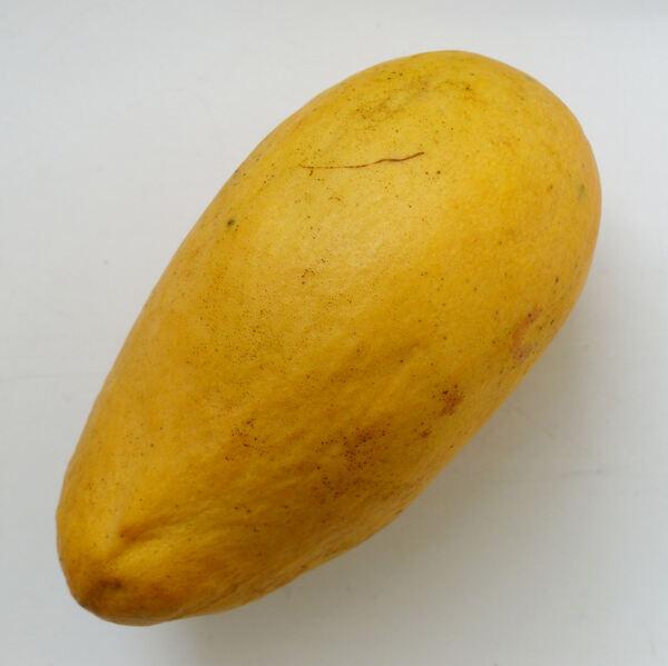 Mangifera indica L. 'Ataulfo'