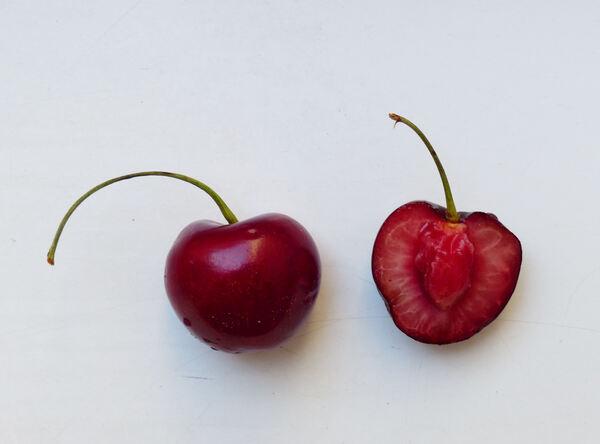 Prunus avium (L.) L. 'Ferrovia'