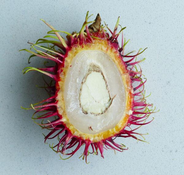 Nephelium lappaceum L.