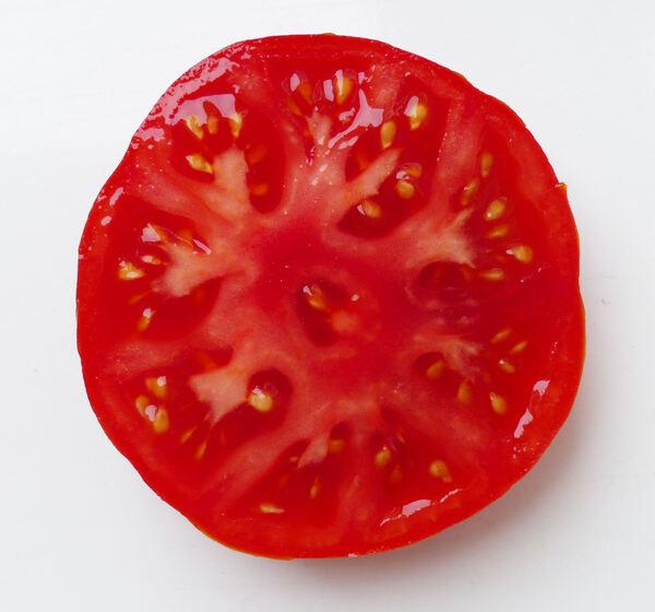 Solanum lycopersicum L. 'Riccio'