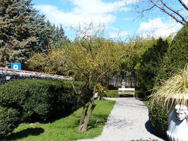 Citrus trifoliata L.