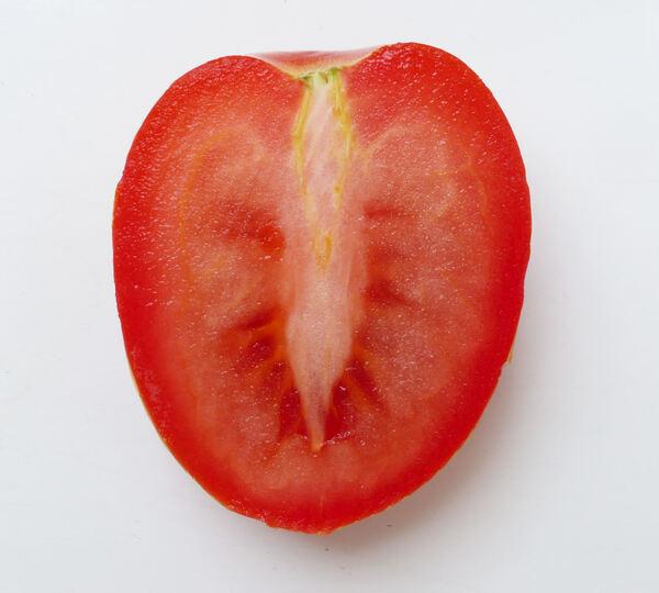 Solanum lycopersicum L. 'Ovetto Rosso'