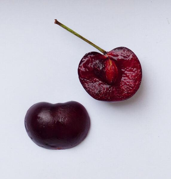 Prunus avium (L.) L. 'Ruby'