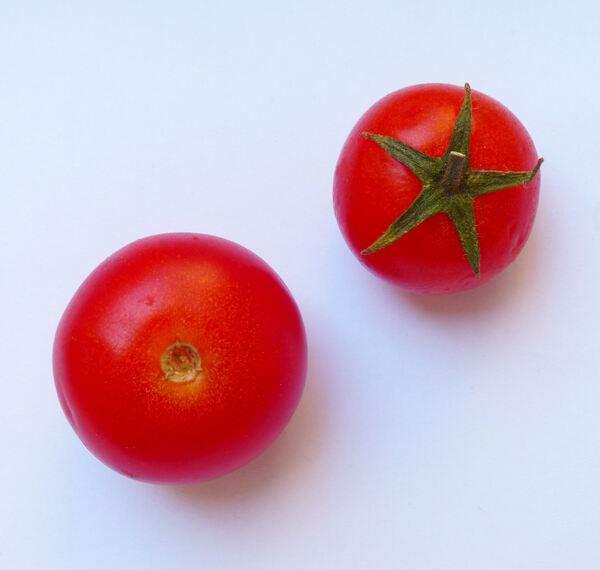 Solanum lycopersicum L. 'Mandello RZ F1'