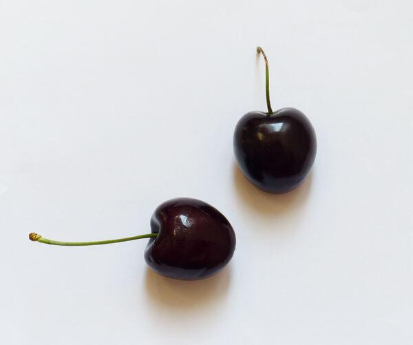 Prunus avium (L.) L. 'Durone Kordia'