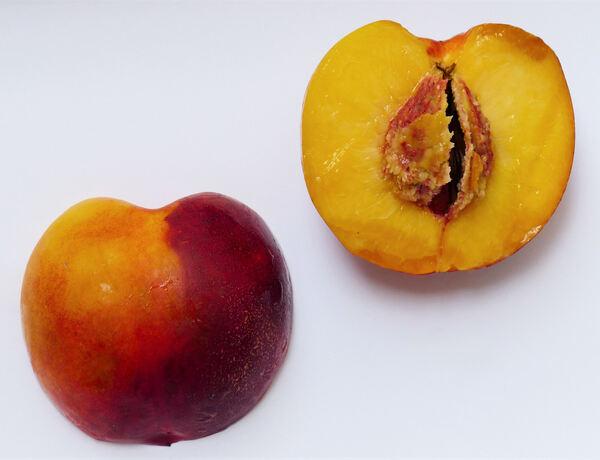 Prunus persica (L.) Batsch var. nucipersica (Borkh.) C.K.Schneid.