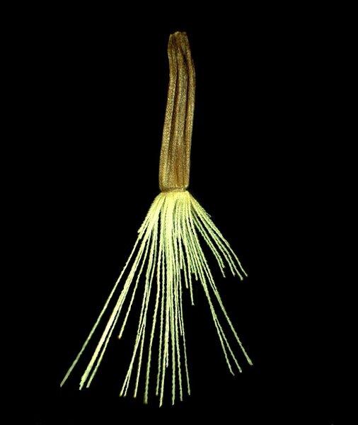 Hieracium calcareum Bernh. ex Hornem.